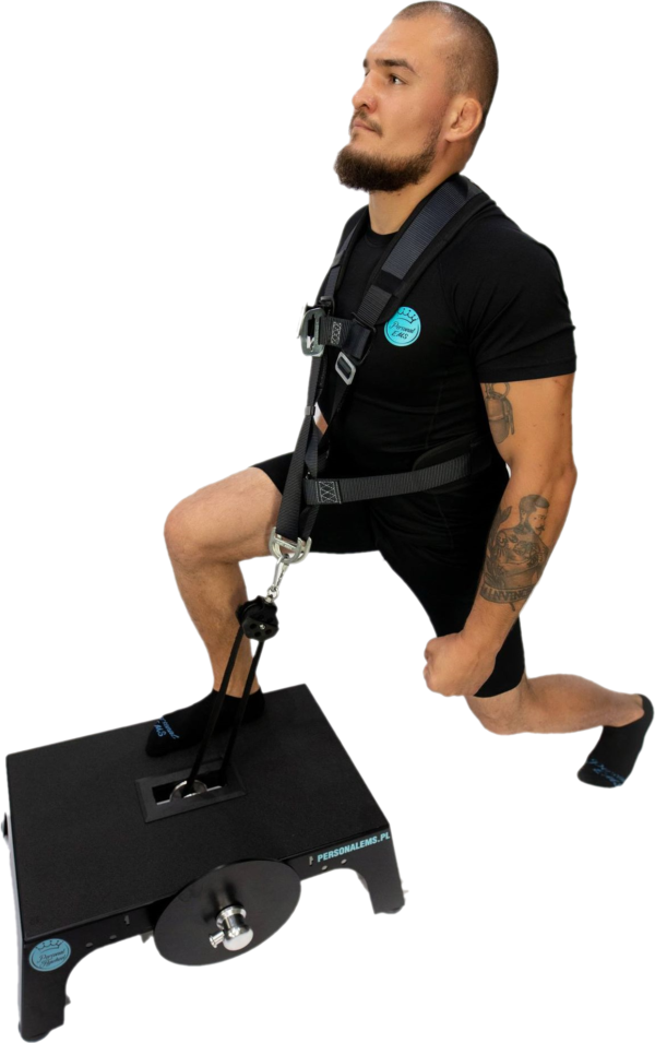 Personal Flywheel Trainer - platforma do ćwiczeń - PersonalEMS
